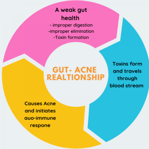 gut health and acne