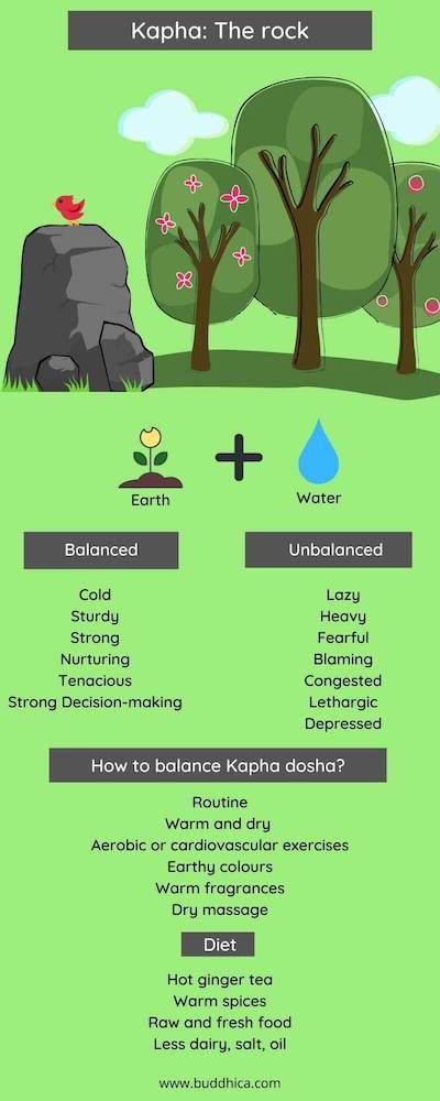 kapha dosha - infographic